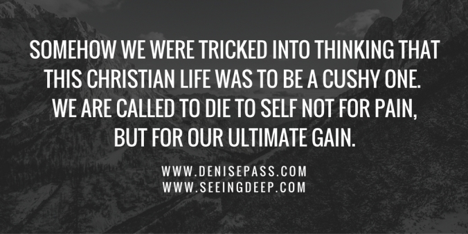 Somehow we were tricked into thinking that this Christian life was to be a cushy one.